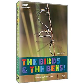 Birds & the Bees [DVD] USA import
