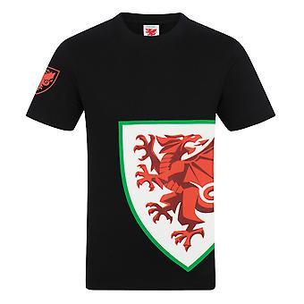 Pays de Galles Cymru FAW Officiel Football Gift Boys Kids Graphic T-Shirt