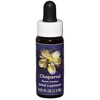 Flower Essence Services Chaparral Dropper, 0.25 oz