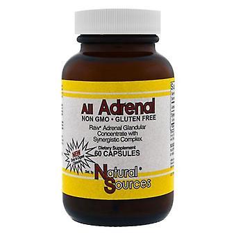 Natural Sources All Adrenal, 60 caps