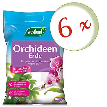Sparset: 6 x WESTLAND® orchid earth, 8 litres