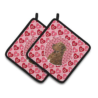 Chesapeake Bay Retriever Hearts Love and Valentine's Day Pair of Pot Holders