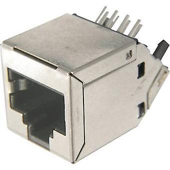 ASSMANN WSW AMJ-188-30101-CAT6 modulära Socket, RJ45, CAT 6 8 RJ45-uttag, horisontellt fäste Silver