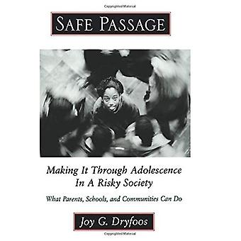 Safe Passage: Making It Through Adolescence in a Risky Society - What Parents, Schools, and Communities Can Do