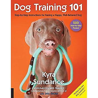 Hundträning 101: Stegvisa instruktioner för att höja en glad skötsam hund