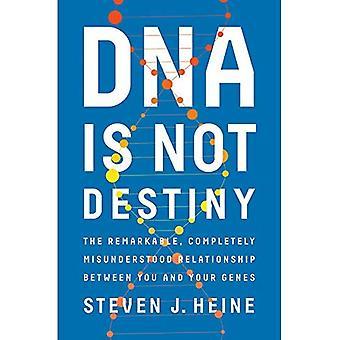 DNA er ikke skjebne: Bemerkelsesverdig, helt misforstått forholdet mellom deg og gener
