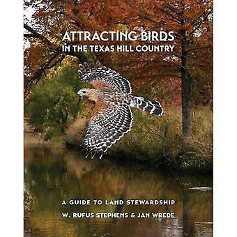 Locka fåglar i Texas Hill Country: en Guide till mark Stewardship (Myrna och David K. Langford böcker om arbetande landområden)