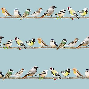 Fresca Tweeting Sky Birds Wallpaper Blue Graham and Brown 106628