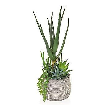 Artificial Mixed Aloe in Pot