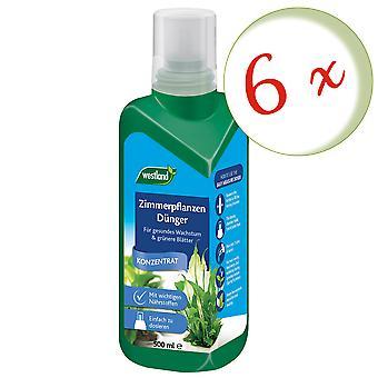 Sparset: 6 x WESTLAND® houseplants fertilizer, 500 ml