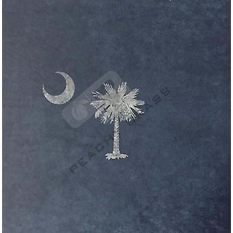 South Carolina State Vlag Pb Infusie