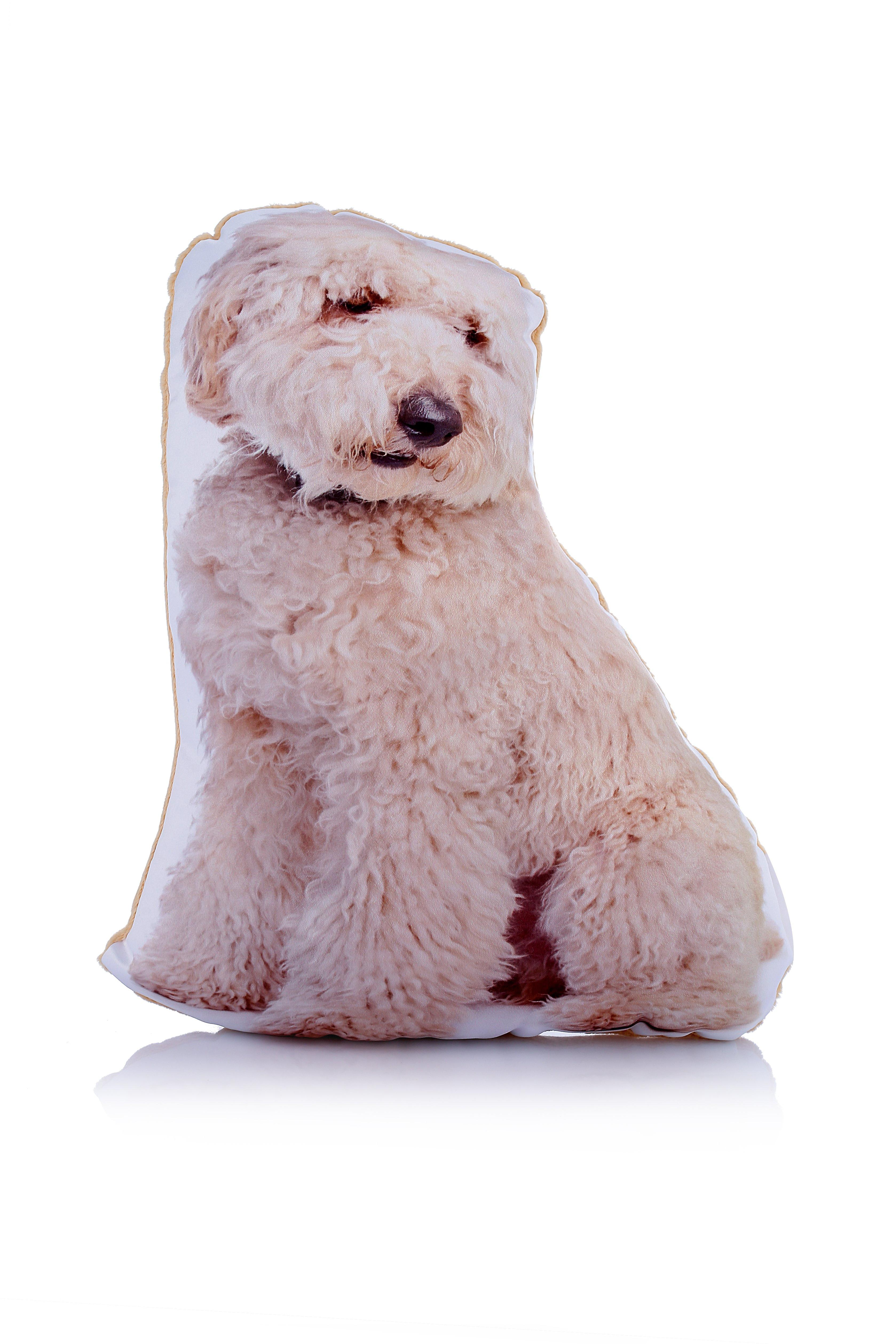 Adorable labradoodle shaped midi cushion