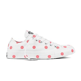 Converse Chuck Taylor All Star C560629 universal all year women shoes
