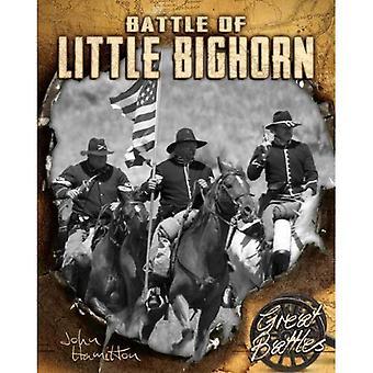 Slag bij Little Bighorn (grote gevechten)