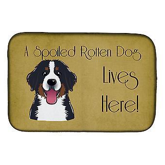Bouvier Bernois gâté chien vie ici plat Mat de séchage
