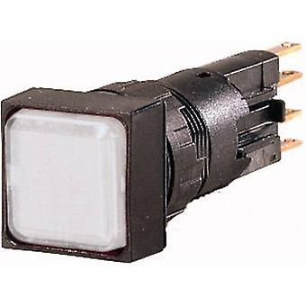 إيتون Q25LF-WS مؤشر الضوء الأبيض 24 V AC 1 pc (ق)