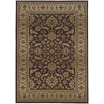 Genesis 952m1 brown/beige oriental area rug (4'x 5'9
