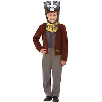 Vind i Willows Badger Deluxe kostume barn Brown