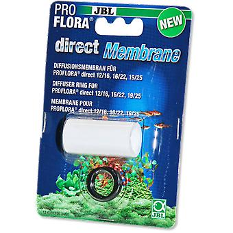 JBL Proflora Direct 16/22 (Fish , Plant Care , Accessories)