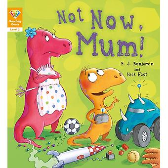 Reading Gems Not Now Mum Level 2 by QED Publishing