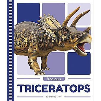 Dinosaurs - Tyrannosaurus rex by  -Bradley Cole - 9781641855549 Book