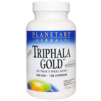 Planetary Herbals, Triphala Gold, GI Tract Wellness, 550 mg, 120 Capsules