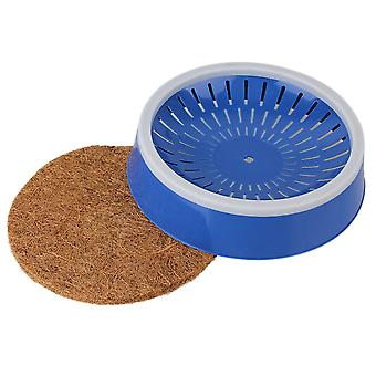 Blue Pigeons Bird Eggs Basin Nest With Grass Mat