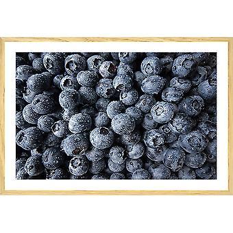 Poster keukenkuur van zwarte bes