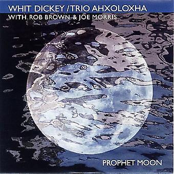 Whit Dickey & Trio Ahxoloxha - profet månen [DVD] USA importere