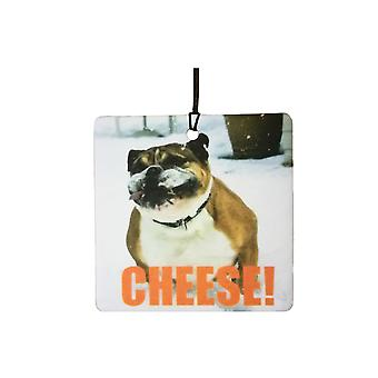 Decir queso ambientador de aire