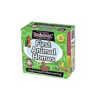 BrainBox First Animal Homes Pre School