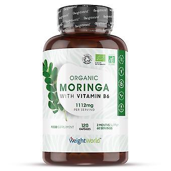 Pure Moringa Capsules 1112mg - 120 Moringa Tablets