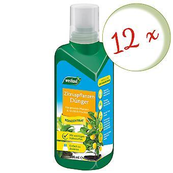 Sparset : 12 x WESTLAND® engrais d'agrumes, 500 ml