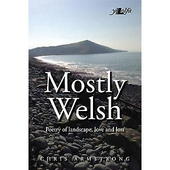 Mostly Welsh Poetry of Landscape Love and Loss 43585