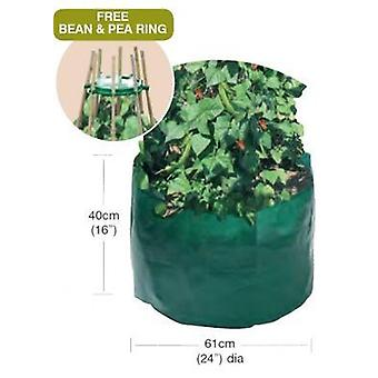 Bean & Pea Bag mit kostenlosen Bean & Pea Ring Polyethylen Green Storage