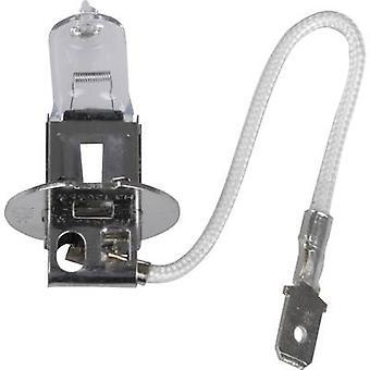 Unitec Halogen bulb Standard H3 55 W 12 V