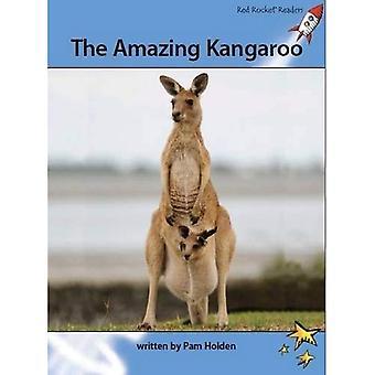 Den fantastiska Kangaroo