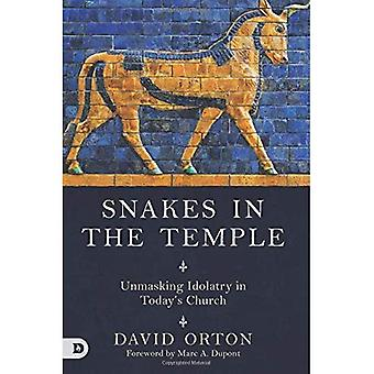 Snakes in the Temple: Unmasking Idolatry in Today's Church