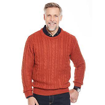 Pegasus Mens Jumper Shetland Wool Cable Sweater
