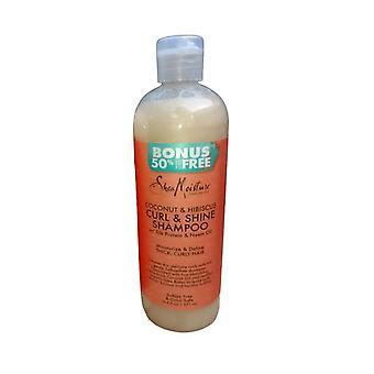 L'humidité karité coco shampooing