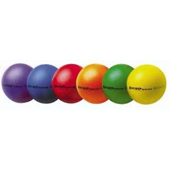 BA756P, Champion Sports Rhino Skin Special Balls - 8.25