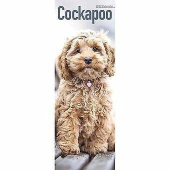 Otter House Cockapoo Slim Kalender 2022