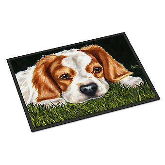 Cavalier Spaniel in der Grass-Indoor oder Outdoor-Matte 18 x 27