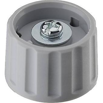 Ritel 26 28 60 1 Control knob Grey (Ø x H) 28 mm x 18.2 mm 1 pc(s)