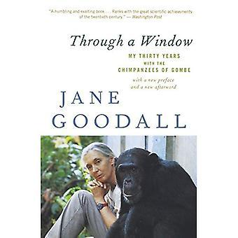 Genom ett fönster: mina trettio år med schimpanser i Gombe