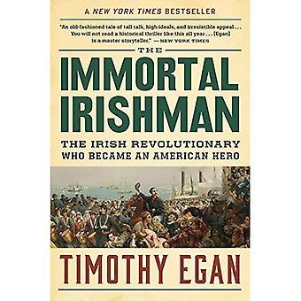 Odödliga irländaren