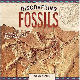 Discovering Fossils (Excavation Exploration)
