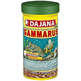 Dajana Gammarus 1 Litro (Gady , Pokarm dla gadów)
