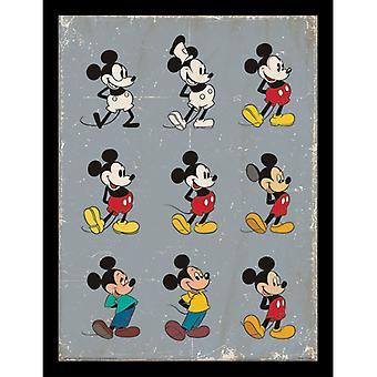 Mickey Mouse Evolution Placa Emoldurada 30 * 40cm