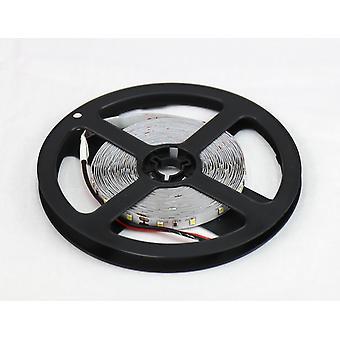 Jandei LED Tiras 12V Cold White 6000K 300LED Bobina 5 Metros IP20 Interior SMD2835 Base adesiva de alta qualidade 3M. Cortando a cada 5 centímetros.